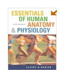 9780805373301: Essentials of Human Anatomy and Physiology (TRANSPARENCY ACETATES)