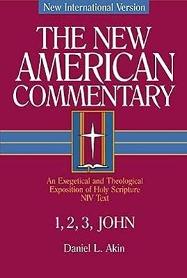 9780805401387: 1,2,3 John: An Exegetical and Theological Exposition of Holy Scripture (The New American Commentary)