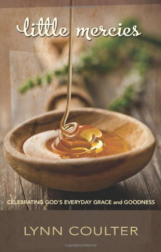 9780805449358: Little Mercies: Celebrating God's Everyday Grace and Goodness