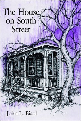 9780805957099: The House on South Street
