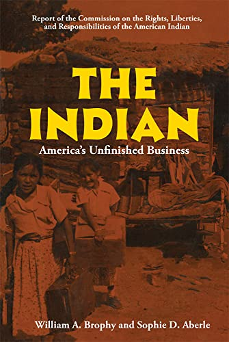 9780806114170: The Indian: America's Unfinished Business