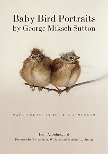 9780806137698: Baby Bird Portraits by George Miksch Sutton: Watercolors in the Field Museum