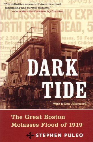 Dark Tide: The Great Boston Molasses Flood of 1919 (Signed)
