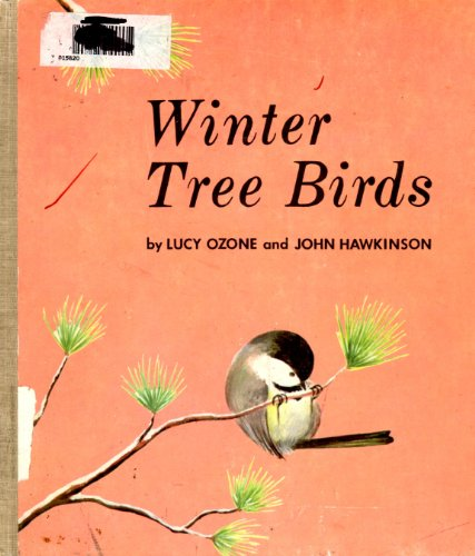9780807591314: Winter tree birds,