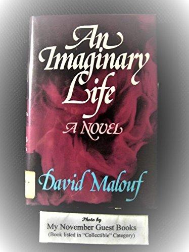 9780807608845: An Imaginary Life: A Novel