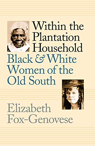 9780807818084: Within the Plantation Household: Black and White Women of the Old South (Gender and American Culture)