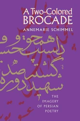 9780807820506: A Two-Colored Brocade: The Imagery of Persian Poetry