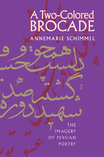 9780807856208: A Two-Colored Brocade: The Imagery of Persian Poetry