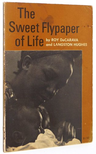 9780809013388: The Sweet Flypaper of Life