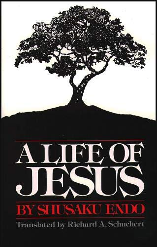 9780809123193: A Life of Jesus