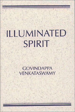 9780809134625: Illuminated Spirit (The Wit Lectures)