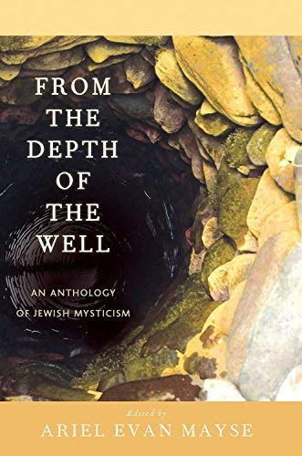 9780809148790: From the Depth of the Well: An Anthology of Jewish Mysticism