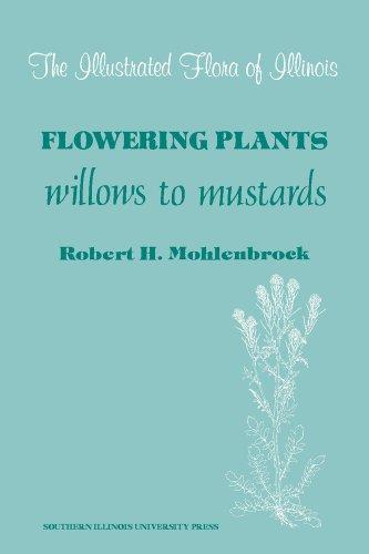 9780809380138: Illustrated Flora of Illinois