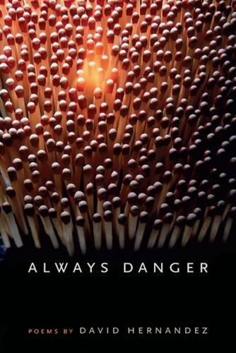 9780809387908: Always Danger