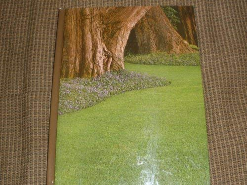 Lawns and Ground Covers: James V. Crockett