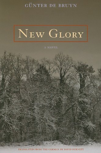 9780810125520: New Glory: A Novel