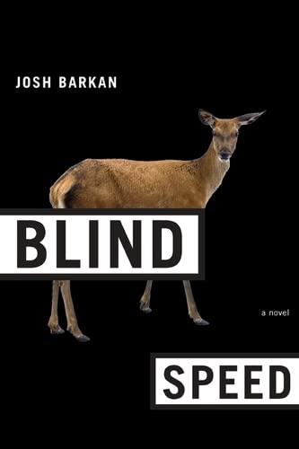 9780810129252: Blind Speed: A Novel