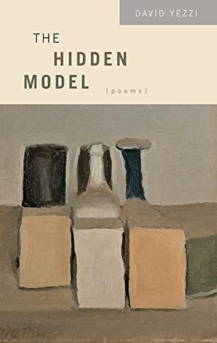 9780810151451: The Hidden Model (Triquarterly Books)