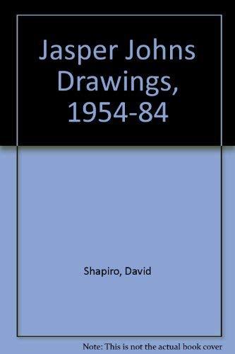 9780810911567: Jasper Johns Drawings, 1954-1984