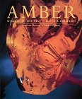 9780810919662: AMBER: Window to the Past (Antique)