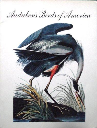 Audubon's Birds of America: Audubon, John James;Dock,