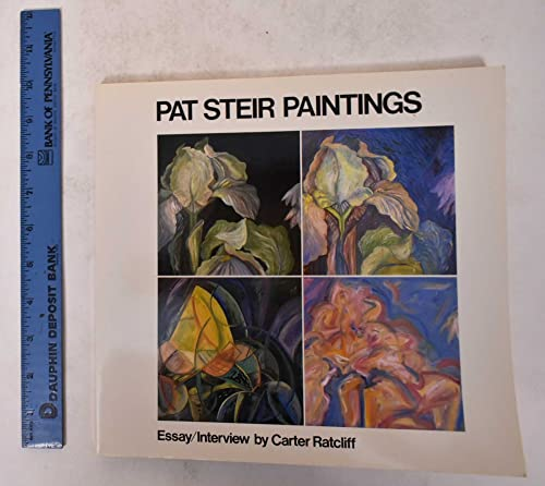 9780810923164: Pat Steir: Paintings
