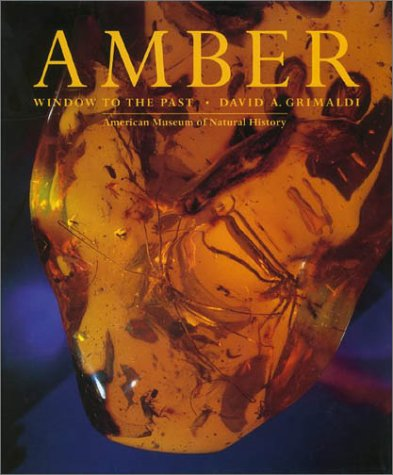 9780810926523: Amber: Window to the Past