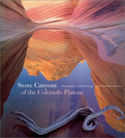 9780810929920: Stone Canyons of the Colorado Plateau