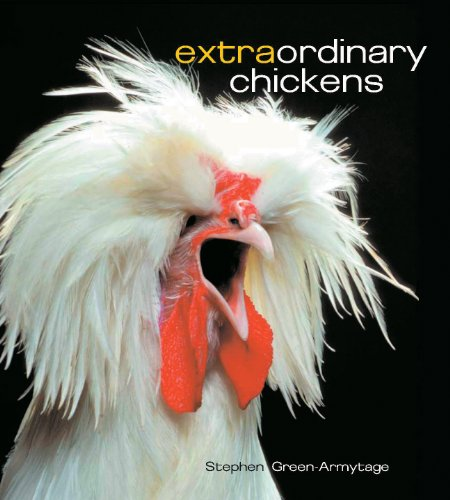 9780810933439: Extraordinary Chickens