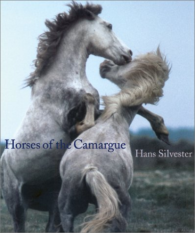 9780810935457: Horses of the Camargue