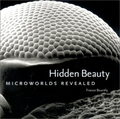 9780810935471: Hidden Beauty: Microworlds Revealed