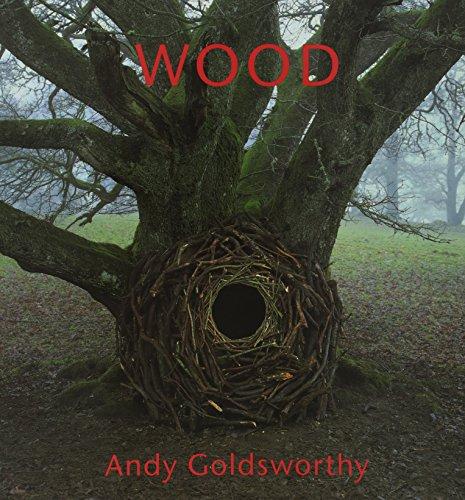 9780810939929: Wood