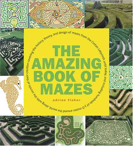 9780810943117: The Amazing Book of Mazes