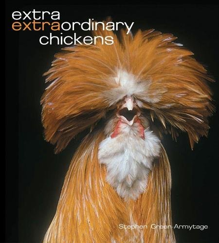9780810959248: Extra Extraordinary Chickens
