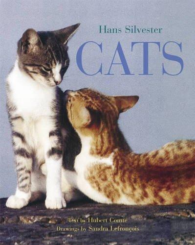 9780810959897: Cats