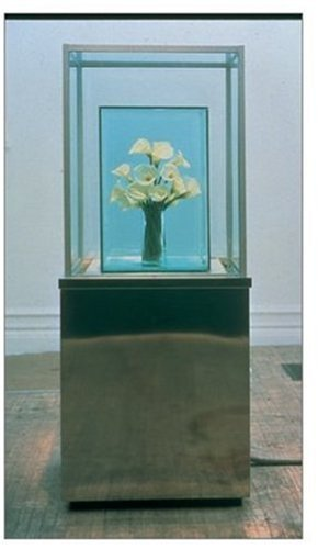 9780810962620: Marc Quinn: Tate Liverpool : 1 February - 28 April 2002