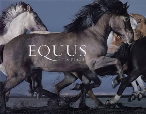 9780810971424: Equus