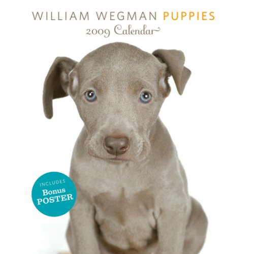 William Wegman Puppies 2009 Wall Calendar: (with poster) (0810972204) by William Wegman