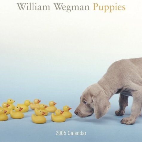 9780810979604: William Wegman Puppies: Wall Calendar 2005