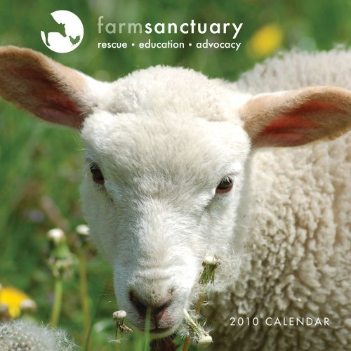 9780810979987: Farm Sanctuary Rescued Animals 2010 Wall Calendar