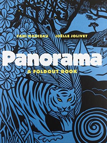 9780810983328: Panorama: A Foldout Book