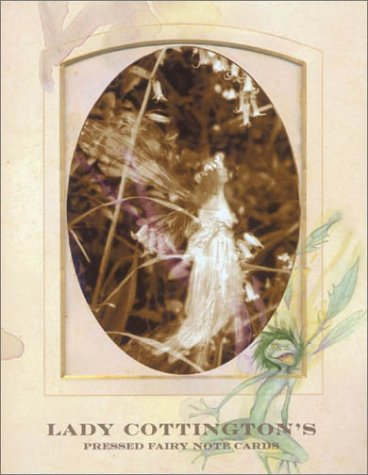Lady Cottington's Pressed Fairy Album: Notecards in a Slipcase with Drawer: Froud, Brian