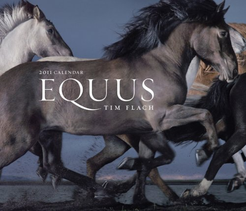 9780810989115: Equus 2011 Wall Calendar