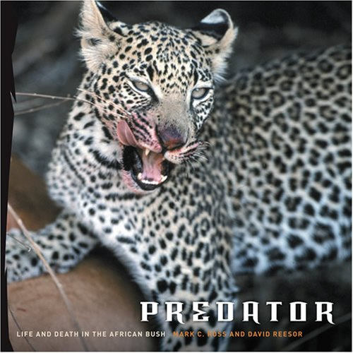 9780810993013: Predator: Life & Death in Africa: Life and Death in the African Bush