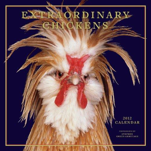 Extraordinary Chickens 2012 Wall Calendar: Stephen Green-Armytage