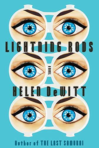Lightning Rods (Hardback): Helen de Witt