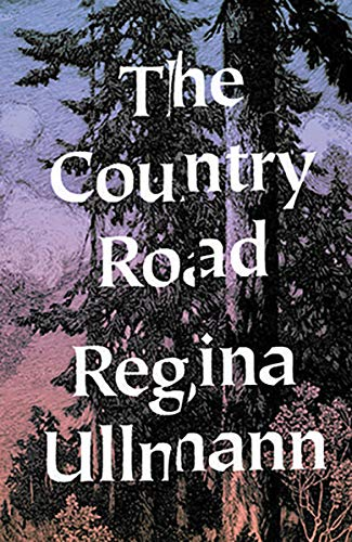 9780811220057: The Country Road: Stories