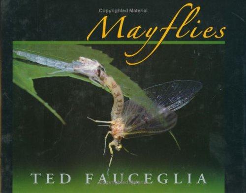 Mayflies: Fauceglia, Ted
