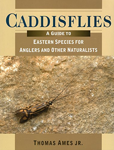 9780811704564: Caddisflies: A Field Guide to Eastern Species for Anglers and Other Naturalists