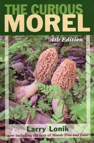 9780811711456: The Curious Morel